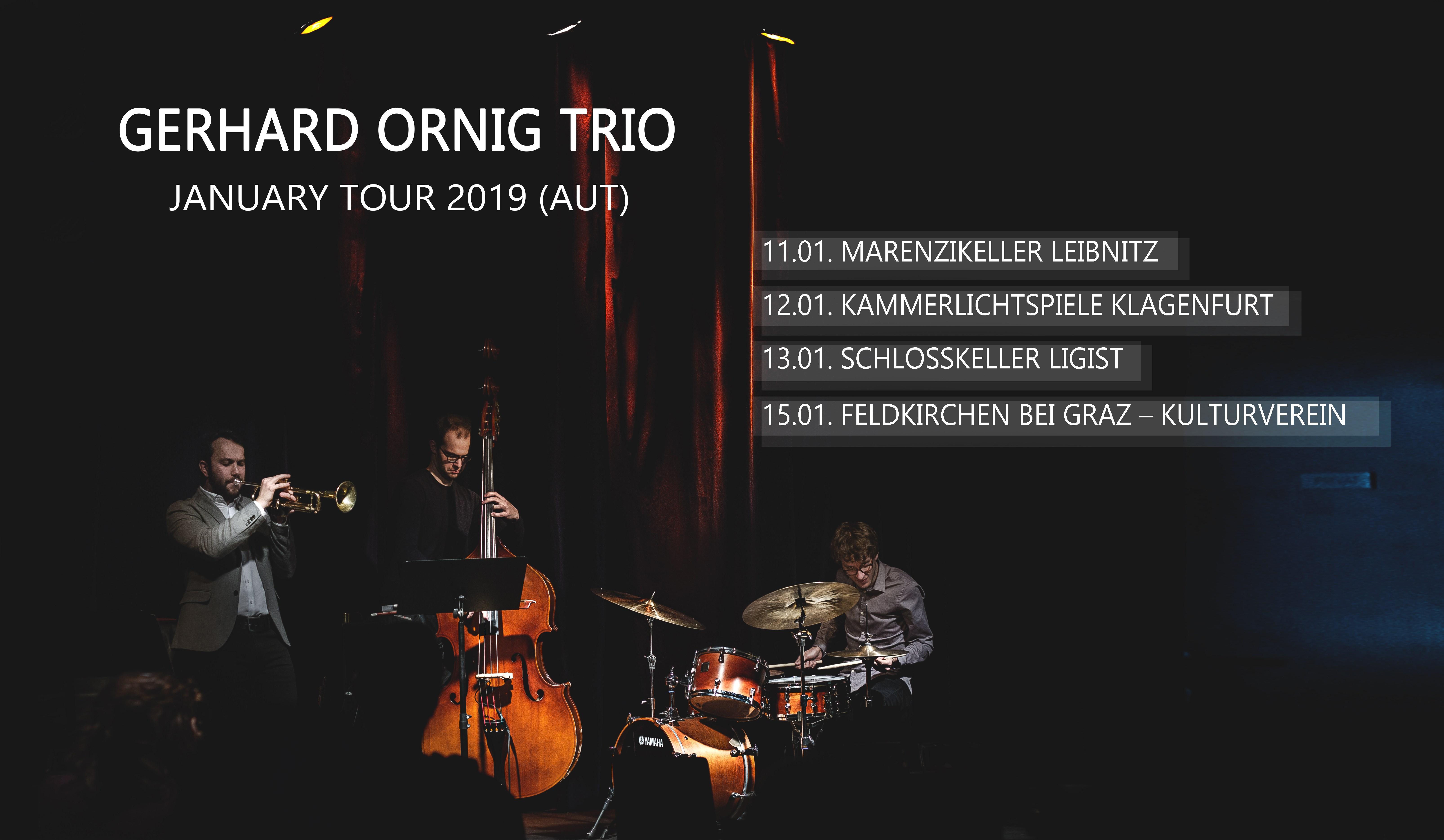 GO-Trio: January Tour